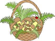 Korb mit Pilzen Pilzzeit Festliche Postkarte Vektorillustration stock abbildung