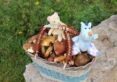 Korb mit Pilzen und Spielwaren Stockbilder