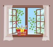 Korb mit Reinigungsmitteln auf dem Fensterbrett Abwaschflüssigkeit und -schwämme lizenzfreie abbildung