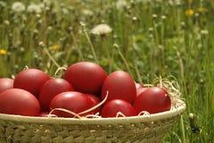 Korb mit roten Ostereiern Lizenzfreies Stockbild