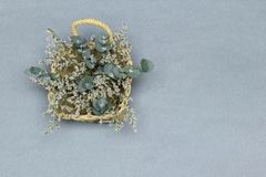 Korb mit weißen Blumen und Eukalyptusniederlassungen auf dem grauen Hintergrund lizenzfreies stockfoto