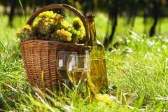 Korb voll der Trauben und des Weins Lizenzfreie Stockbilder