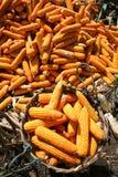 Korb voll von Mais Lizenzfreie Stockbilder