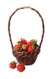 Korb von Erdbeeren Stockfoto