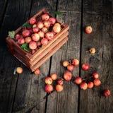 Korb von frischen Äpfeln des Paradieses auf einem hölzernen lizenzfreies stockfoto
