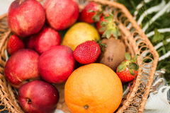 Korb von frischen organischen Früchten im Garten Lizenzfreies Stockbild