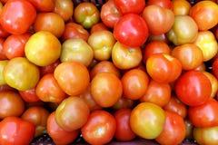Korb von frischen Tomaten Stockfotos