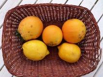 Korb von Orangen und von Zitronen Lesvos Griechenland Stockbild