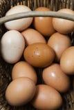 Korb von organischen Eiern aus Freilandhaltung stockfotos
