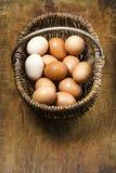 Korb von organischen Eiern aus Freilandhaltung auf antikem Schneidebrett lizenzfreie stockfotos