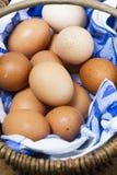 Korb von organischen freerange Eiern mit blauem und weißem Stoff stockfotos