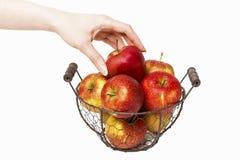 Korb von roten reifen Äpfeln und von einem Apfel in der schönen Hand Lizenzfreie Stockbilder