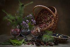 Korb von wilden Beeren stockbilder