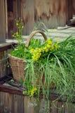 Korb von wilden Blumen und von Gras auf Landhaus tritt Lizenzfreies Stockbild