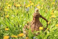 Korbflasche im Gras Stockbild