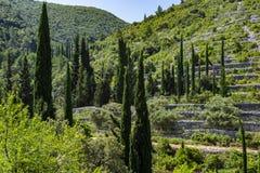 Korcula Island, Dalmatia Croatia stock photo