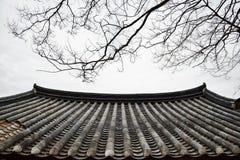 Koreański tradycyjny kafelkowy dach fotografia royalty free