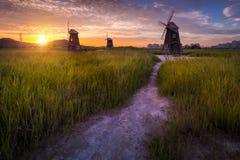 Korea landscape Beautiful sunset and traditional windmills Royalty Free Stock Photos