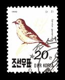 Korea Północna na znaczkach pocztowych obrazy stock