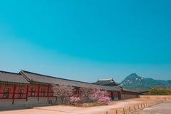Korea Palace. Gyeongbokgung palace, South Korea. / 2 April 2016 royalty free stock photo
