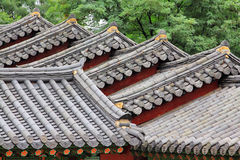 Korea Traditional Architecture Roof royalty free stock image