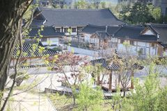 Korea traditionellt hus, staket, v?gg, tr?d arkivbild