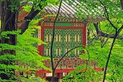 Korea UNESCO World Heritage - Seoul Changdeokgung Palace Royalty Free Stock Images