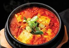 Koreaans kruidig traditioneel voedsel stock foto's
