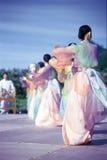 Koreaans Overblijfsel stock afbeelding