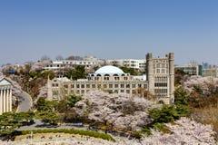 Koreaanse campus Royalty-vrije Stock Afbeeldingen