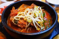 Koreaanse soep ppyeohaejang-gug met vlees, kimchi en sojaspruiten royalty-vrije stock foto
