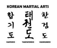 Koreaanse vechtsporten Stock Afbeeldingen