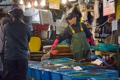 Koreaanse Vishandelaar bij vissenmarkt, Haven Daepohang Royalty-vrije Stock Afbeeldingen