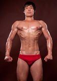 Korean athlet. Young korean bodybuilder posing in studio stock images