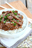 Korean Beef Stock Photo
