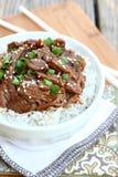 Korean Beef Stock Photo