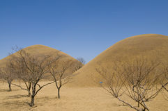 Korean Burial Mounds. Royalty Free Stock Image