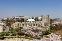 Korean campus Royalty Free Stock Images