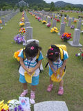 Korean Children Praying in Cemetery. Young children praying in the national cemetery during memorial day Royalty Free Stock Image