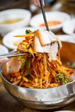 Korean Cold Noodles Royalty Free Stock Photos