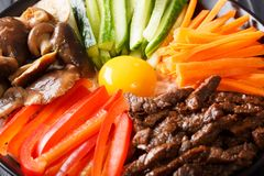 Korean cuisine: Bibimbap with beef, raw yolk, vegetables and ric. E macro on a plate. horizontal Royalty Free Stock Photography