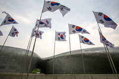 Korean Flags in Ddp Royalty Free Stock Photography