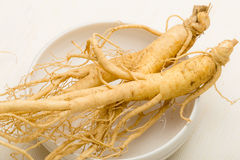 Korean fresh ginseng Royalty Free Stock Images
