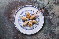 Korean Fried Dumplings Cham royaltyfri bild