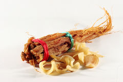 Korean Ginseng roots and Lily buds Stock Images