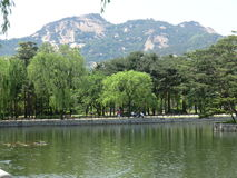 Korean Lake Trees and Mountain in Seoul Stock Photos