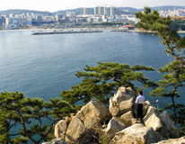 Korean man standing on rocks looking at city view Stock Images