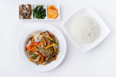 Korean meal. With fern, spinach and daikon, rice and meet with vegetables royalty free stock photos