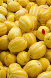 Korean melons Stock Images