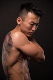 Korean model with tattoo. Male model with a snake and skull tattoo Royalty Free Stock Image